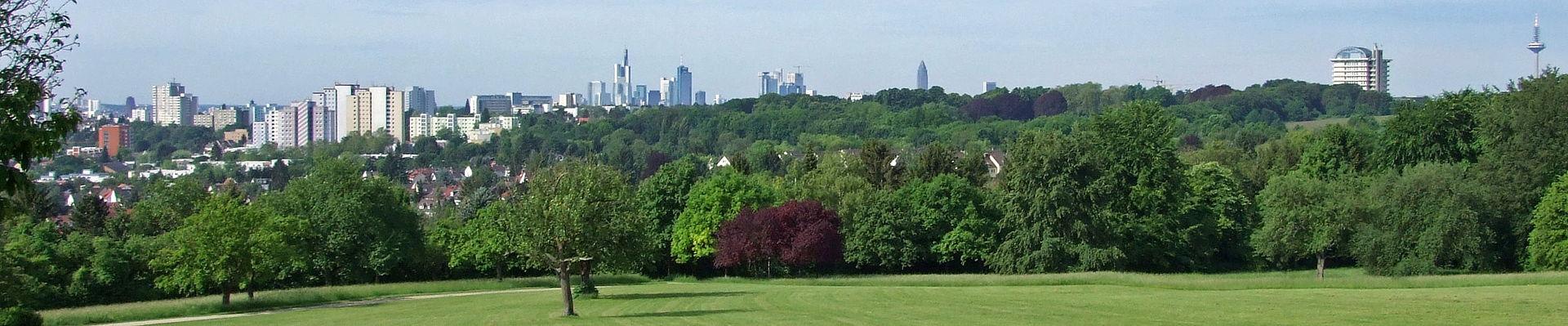 Panorama miasta z Lohrpark, źródło: http://home.meinestadt.de/frankfurt-am-main