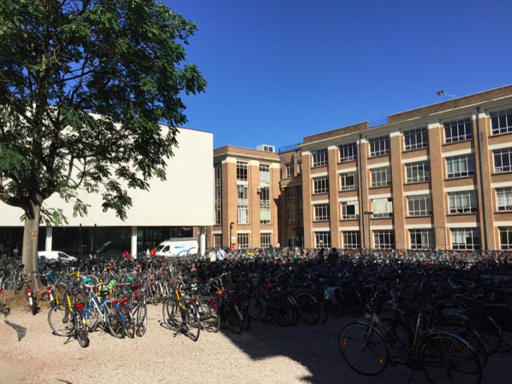 Parking rowerów przy uniwersytecie źródło: zbiór własny autora